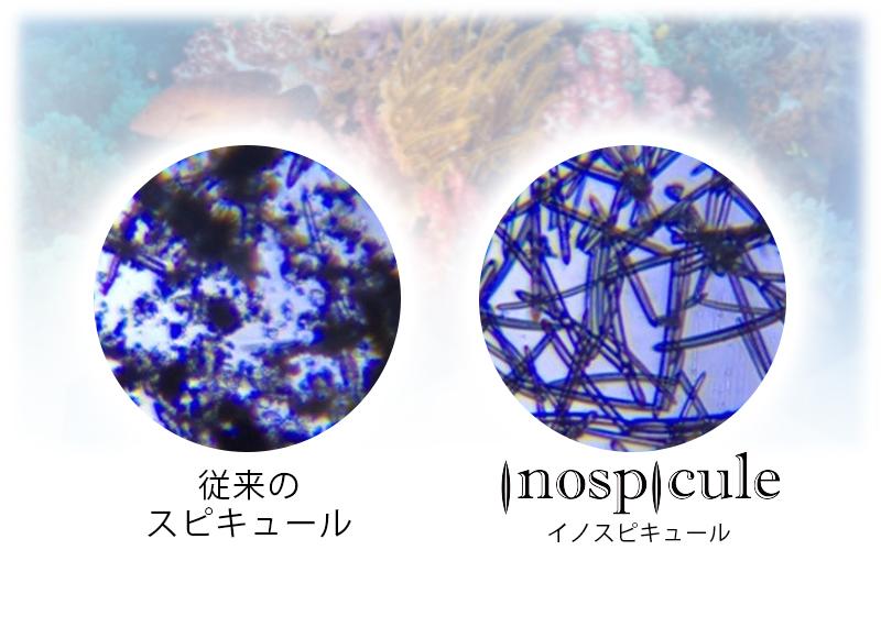 イノスピキュール画像